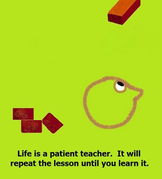 Life is a patient teacher - Monkeytraps