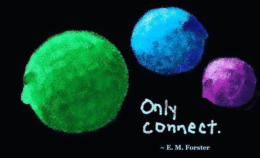 Connect - Monkeytraps