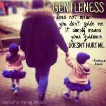 Parenting — Gentle Guidance