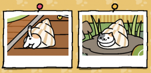 Neko Atsume update - Pasty